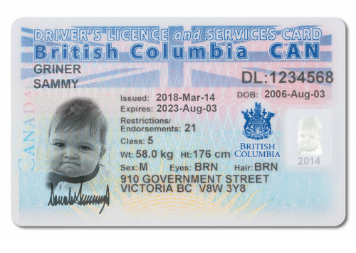 DRIVERS LICENCE and SERVIGES CARD British Columbia CA N GRINER SAMMY  DL1234568 DOB 2006-Aug-03 Issued 2018-Mar-14 Expires 2023-Aug-03  Restrictions Endorsements 21 Class 5 BRITISH Wt 580 Kg Ht 176 Cm COLUMBIA  Sex