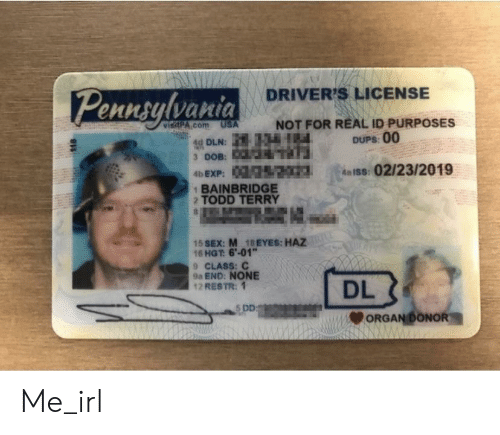 Id 2 Dups Not Driver's Terry Usa Real 15 16 9a 18eyes License Purposes M Todd Class 124 Dln me Haz 6'-01 On For Me 1bainbridge irl Meme End Dd C 00 Me Hgt S Ennsulvaria Sex Acom Dl 9 184 None 12 Restr 1