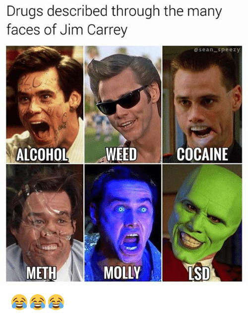 Drugs, Jim Carrey, and Lsd: Drugs described through the many  faces of Jim Carrey  oseanspeez)y  ALCOHOLWEEDCOCAINE  METH  MOLLYS  LSD 😂😂😂