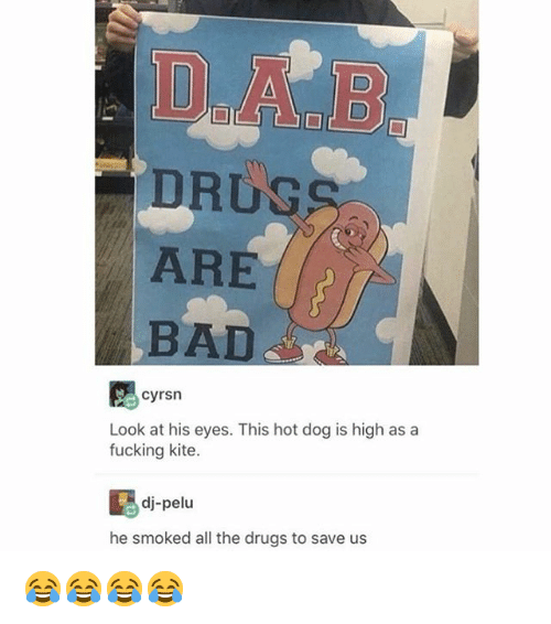 Bad, Drugs, and Fucking: DRUS  ARE  BAD  cyrsn  Look at his eyes. This hot dog is high as a  fucking kite.  dj-pelu  he smoked all the drugs to save us 😂😂😂😂