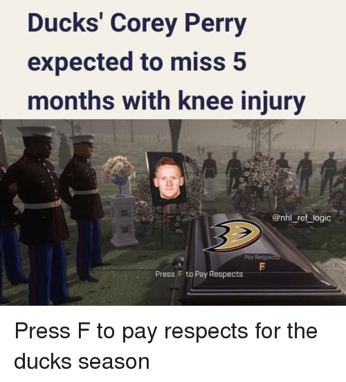 Logic, Memes, and National Hockey League (NHL): Ducks' Corey Perry  expected to miss 5  months with knee injury  @nhl_ref_logic  Pay Respec  Press F to Pay Respects Press F to pay respects for the ducks season