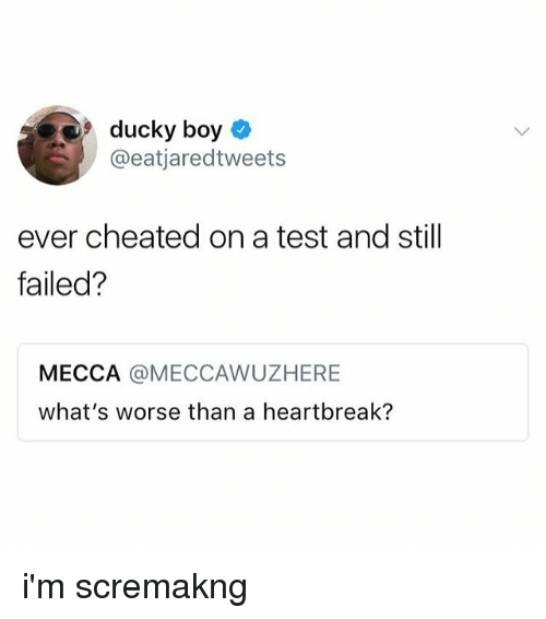 Test, Boy, and Mecca: ducky boy  @eatjaredtweets  ever cheated on a test and still  failed?  MECCA @MECCAWUZHERE  what's worse than a heartbreak? i'm scremakng