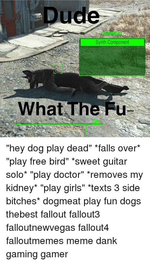 "Dank, Doctor, and Dogs: Dude  DEADMEAT  Synth Component  What The Fu ""hey dog play dead"" *falls over* ""play free bird"" *sweet guitar solo* ""play doctor"" *removes my kidney* ""play girls"" *texts 3 side bitches* dogmeat play fun dogs thebest fallout fallout3 falloutnewvegas fallout4 falloutmemes meme dank gaming gamer"