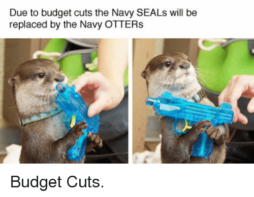 Budget, Navy, and Navy Seals: Due to budget cuts the Navy SEALs will be  replaced by the Navy OTTER:s <p>Budget Cuts.</p>
