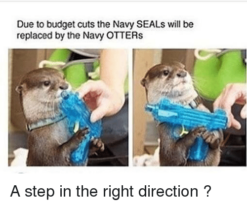 Otters, Budget, and Navy: Due to budget cuts the Navy SEALs will be  replaced by the Navy OTTERs A step in the right direction ?
