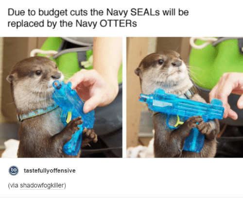 Navy Otters
