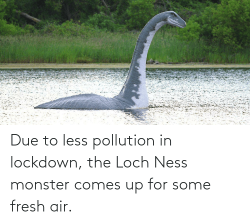 Fresh, Loch Ness Monster, and Monster: Due to less pollution in lockdown, the Loch Ness monster comes up for some fresh air.