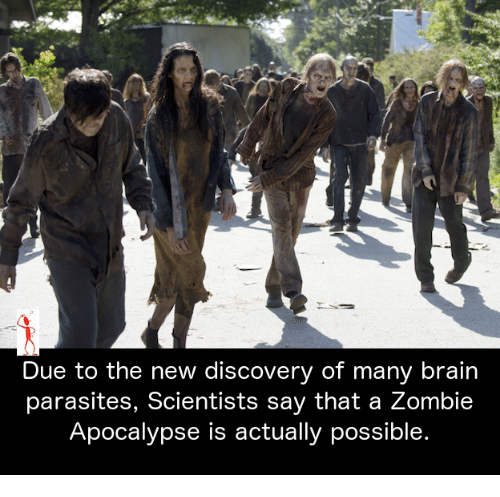 Brains, Memes, and Zombies: Due to the new discovery of many brain parasites, Scientists say that a Zombie Apocalypse is actually possible.