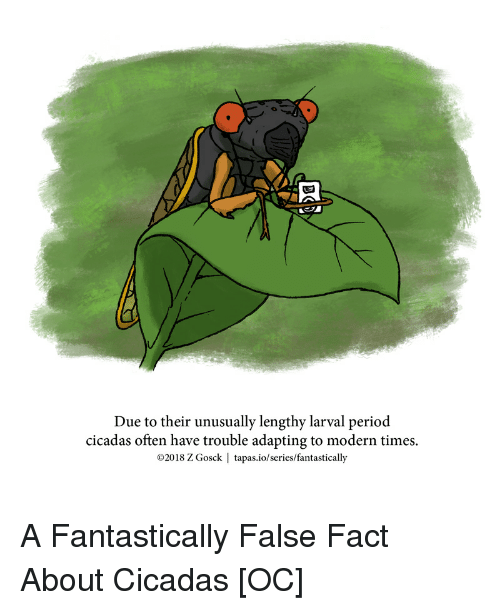 Due to Their Unusually Lengthy Larval Period Cicadas Often Have