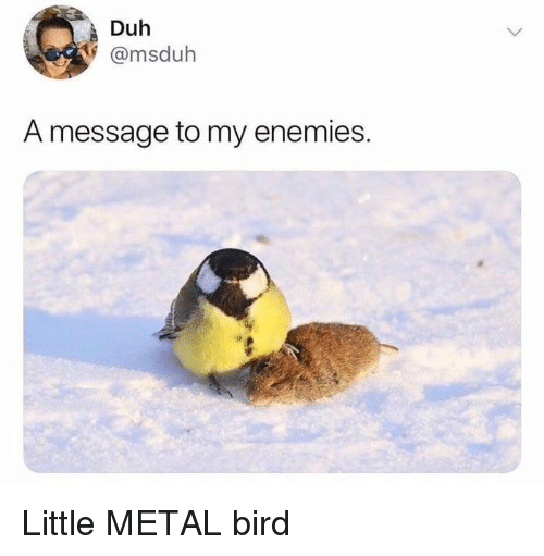 Funny, Enemies, and Metal: Duh  @msduh  A message to my enemies.