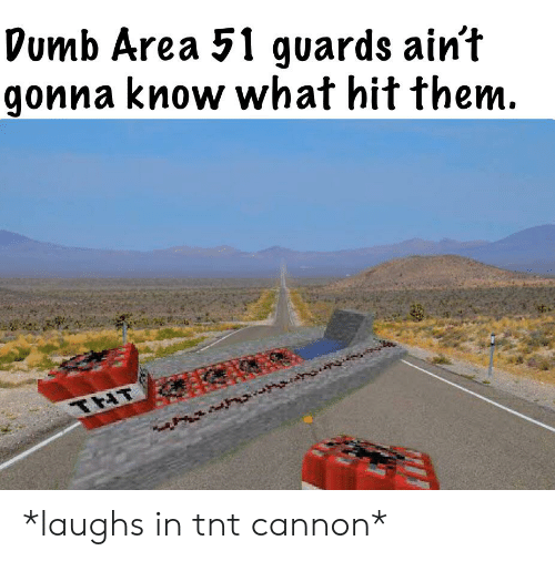 Dumb, Dank Memes, and Area 51: Dumb Area 51 guards ain't  gonna know what hit them.  THT *laughs in tnt cannon*