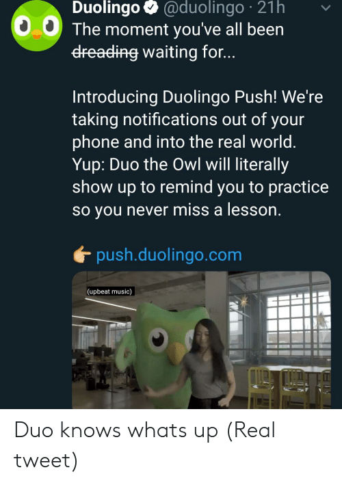 Music, Phone, and The Real: Duolingo @duolingo 21h  0.0 The moment you've all been  dreading waiting for...  Introducing Duolingo Push! We're  taking notifications out of your  phone and into the real world  Yup: Duo the Owl will literally  show up to remind you to practice  so you never miss a lesson  push.duolingo.com  (upbeat music) Duo knows whats up (Real tweet)