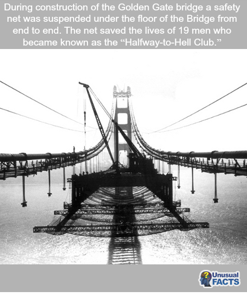 club facts and memes during construction of the golden gate bridge a safety