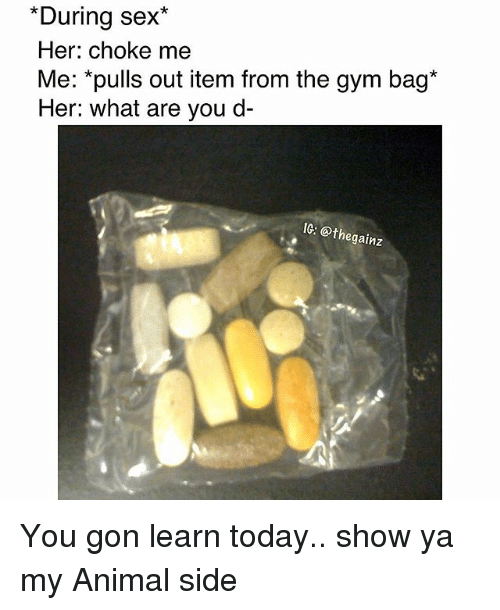 Gym, Memes, and Sex: *During sex*  Her: choke me  Me: *pulls out item from the gym bag*  Her: what are you d-  IG: @thegainz You gon learn today.. show ya my Animal side
