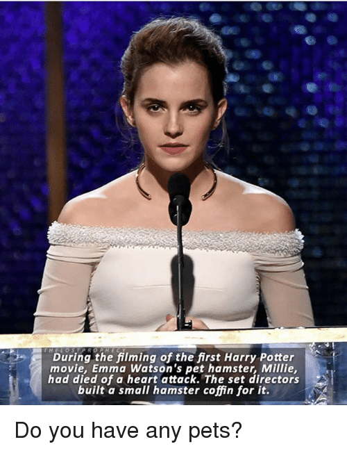 Harry Potter, Memes, and Pets: During the filming of the first Harry Potter  movie, Emma Watson's pet hamster, Millie  had died of a heart attack. The set directors  built a small hamster coffin for it. Do you have any pets?