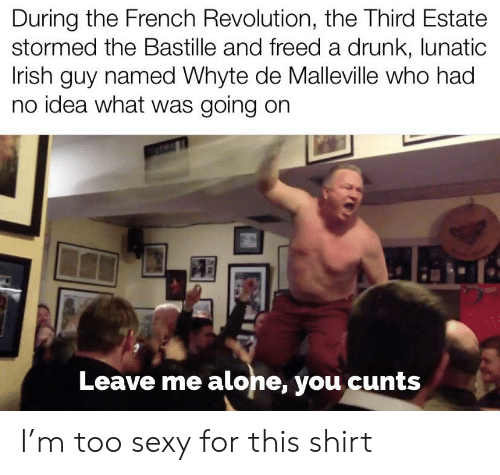 Being Alone, Drunk, and Irish: During the French Revolution, the Third Estate  stormed the Bastille and freed a drunk, lunatic  Irish guy named Whyte de Malleville who had  no idea what was going on  Leave me alone, you cunts I'm too sexy for this shirt