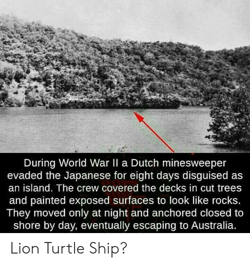 Australia, Lion, and Minesweeper: During World War II a Dutch minesweeper  evaded the Japanese for eight days disguised as  an island. The crew covered the decks in cut trees  and painted exposed surfaces to look like rocks.  They moved only at night and anchored closed to  shore by day, eventually escaping to Australia. Lion Turtle Ship?