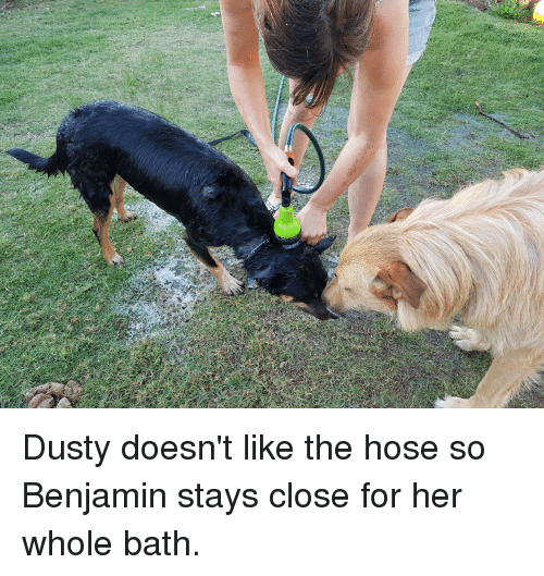Her, Bath, and Benjamin
