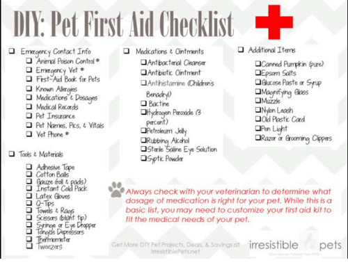 dv pet first id checklist emargency contact info additional items
