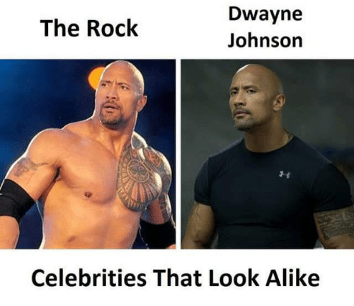 dwayne johnson the rock celebrities that look alike 30011430 dwayne johnson the rock celebrities that look alike dwayne johnson