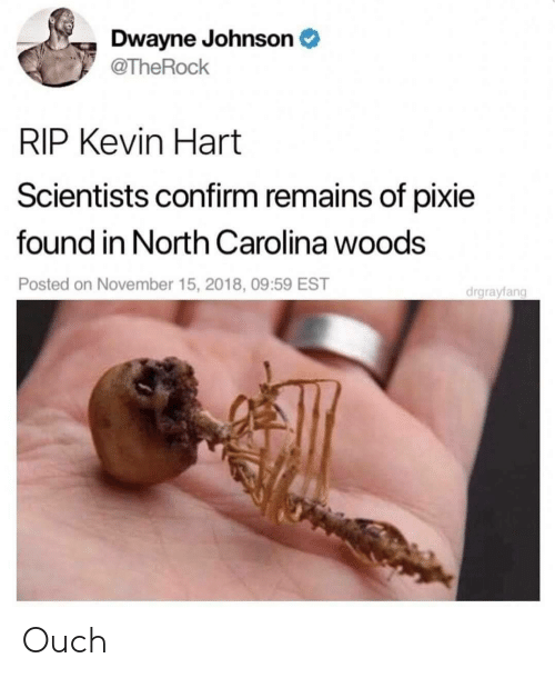 Dwayne Johnson, Kevin Hart, and North Carolina: Dwayne Johnson  @TheRock  RIP Kevin Hart  Scientists confirm remains of pixie  found in North Carolina woods  Posted on November 15, 2018, 09:59 EST  drgrayfang Ouch