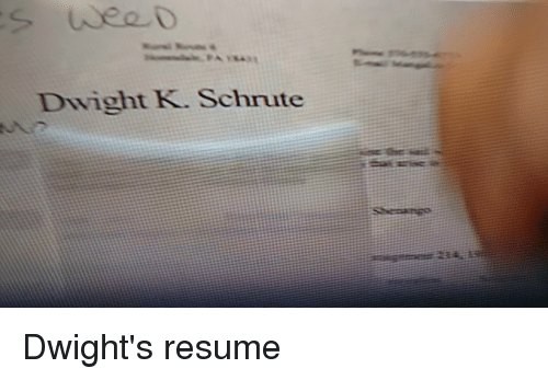 search the office dwight memes on meme