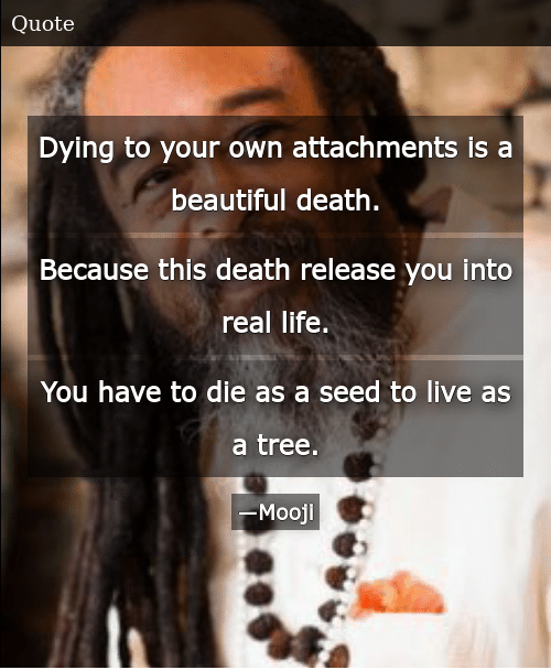 Dying to Your Own Attachments Is a Beautiful Death Because This