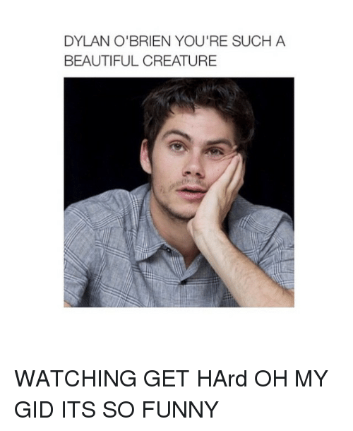 Beautiful, Dylan O'Brien, and Funny: DYLAN O'BRIEN YOU'RE SUCH A  BEAUTIFUL CREATURE WATCHING GET HArd OH MY GID ITS SO FUNNY