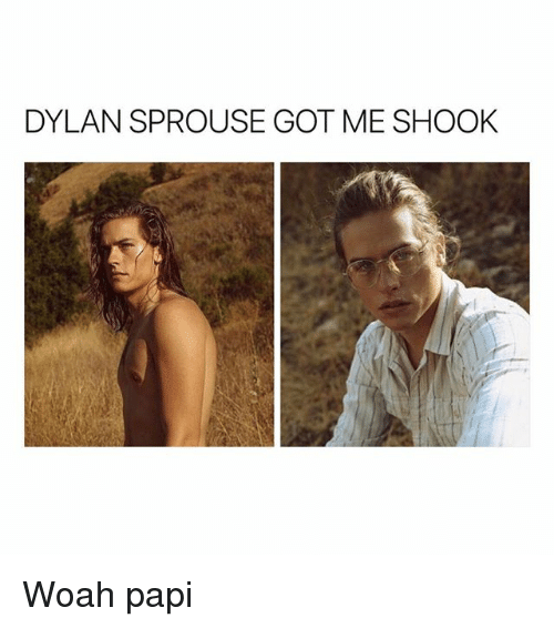 Girl Memes, Dylan Sprouse, and Got: DYLAN SPROUSE GOT ME SHOOK Woah papi