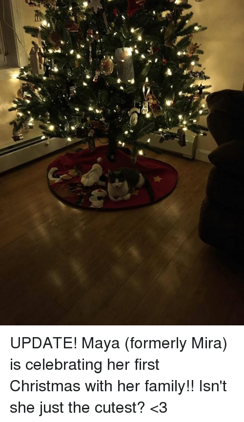 memes celebrated and e update maya formerly mira - When Was The First Christmas Celebrated