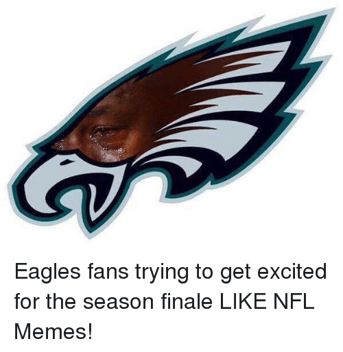 Philadelphia Eagles, Memes, and Nfl: Eagles fans trying to get excited for the season finale LIKE NFL Memes!