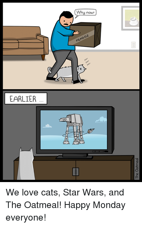 Earlier Why Now Fragile We Love Cats Star Wars And The Oatmeal