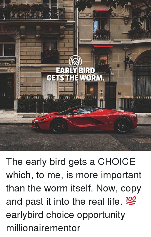 Life, Memes, and Opportunity: EARLY BIRD  GETS THE WORM  EL The early bird gets a CHOICE which, to me, is more important than the worm itself. Now, copy and past it into the real life. 💯 earlybird choice opportunity millionairementor