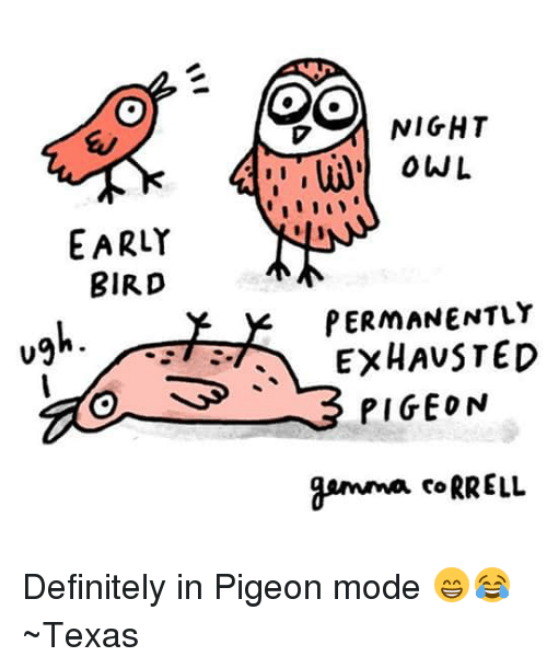 Great Definitely, Memes, And Definition: EARLY BIRD OO NIGHT PERMANENTLY EXHAUSTED  PIGEON Gemma CoRRELL