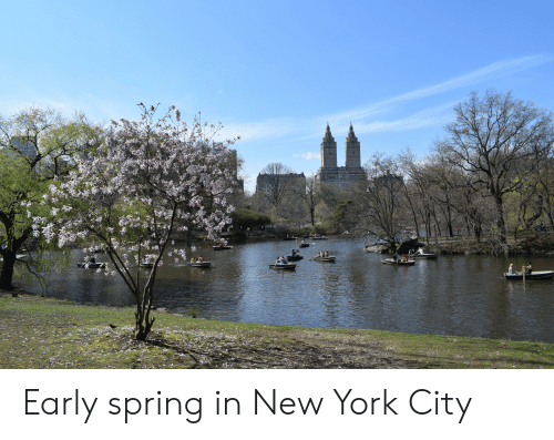 New York, Spring, and New York City: Early spring in New York City