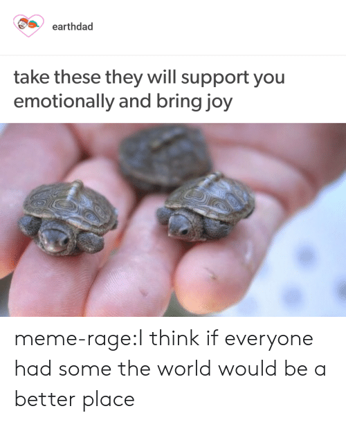 Meme, Tumblr, and Blog: earthdad  take these they will support you  emotionally and bring joy meme-rage:I think if everyone had some the world would be a better place
