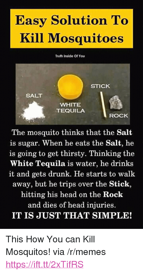 """Drunk, Head, and Memes: Easy Solution To  Kill Mosquitoes  Truth Inside Of You  STICK  SALT  WHITE  TEQUILA  ROCK  The mosquito thinks that the Salt  is sugar. When he eats the Salt, he  is going to get thirsty. Thinking the  White Tequila is water, he drinks  it and gets drunk. He starts to walk  away, but he trips over the Stick,  hitting his head on the Rock  and dies of head injuries.  IT IS JUST THAT SIMPLE! <p>This How You can Kill Mosquitos! via /r/memes <a href=""""https://ift.tt/2xTifRS"""">https://ift.tt/2xTifRS</a></p>"""