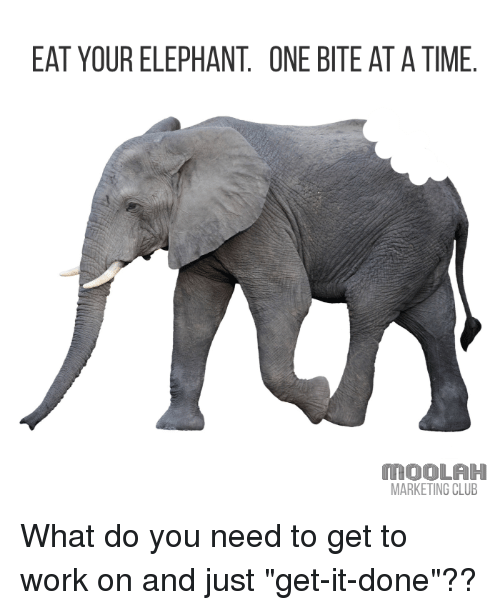 eat-your-elephant-one-bite-atatime-moola
