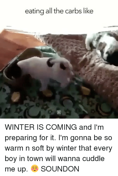 Winter, Girl Memes, and All The: eating all the carbs like  0 WINTER IS COMING and I'm preparing for it. I'm gonna be so warm n soft by winter that every boy in town will wanna cuddle me up. ☺️ SOUNDON