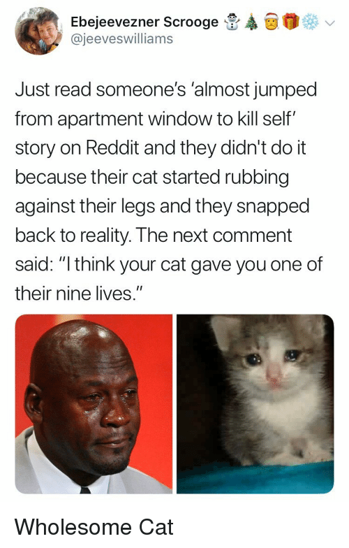 "Reddit, Wholesome, and Jumped: Ebejeevezner Scrooge  @jeeveswilliams  Just read someone's 'almost jumped  from apartment window to kill self""  story on Reddit and they didn't do it  because their cat started rubbing  against their legs and they snapped  back to reality. The next comment  said: ""l think your cat gave you one of  their nine lives."" Wholesome Cat"