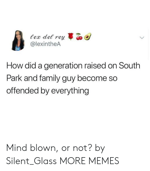 Dank, Family, and Family Guy: ec det r  @lexintheA  reyo  How did a generation raised on South  Park and family guy become so  offended by everything Mind blown, or not? by Silent_Glass MORE MEMES