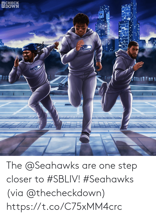 Memes, Seahawks, and 🤖: ECHECK  IDOWN  %3D The @Seahawks are one step closer to #SBLIV! #Seahawks  (via @thecheckdown) https://t.co/C75xMM4crc