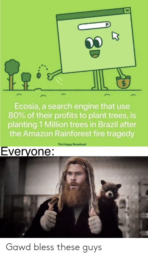 Amazon, Fire, and Brazil: Ecosia, a search engine that use  80% of their profits to plant trees, is  planting 1 Million trees in Brazil after  the Amazon Rainforest fire tragedy  The Happy Broadcast  Everyone: Gawd bless these guys
