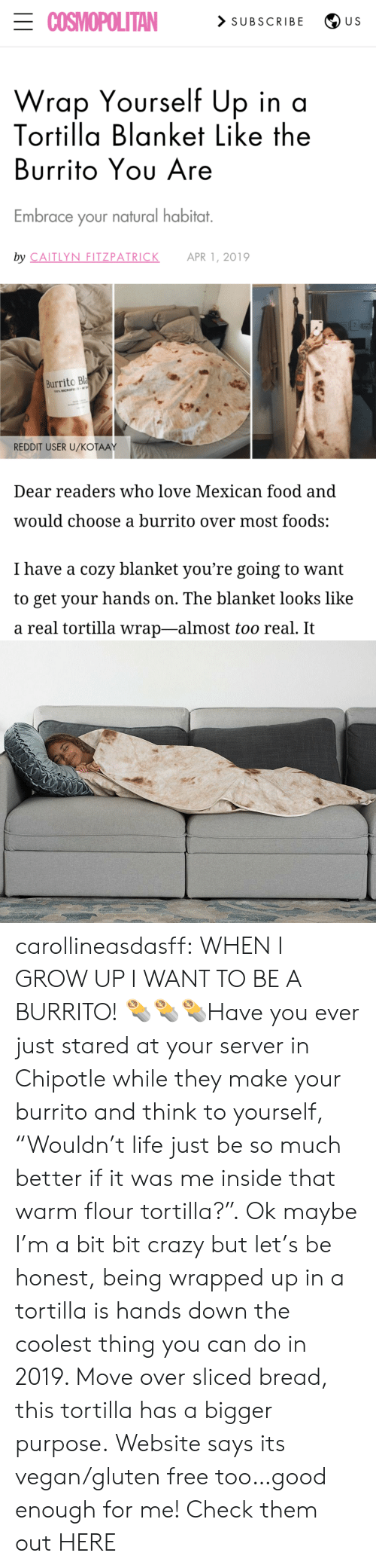 """Chipotle, Crazy, and Food: ECOSMOPOLITAN  > SUBSCRIBE  U S  Wrap Yourself Up in a  Tortilla Blanket Like the  Burrito Yου Are  Embrace your natural habitat.  by CAITLYN FITZPATRICK  APR 1, 2019  Burrito Bla  100% MICROFE  REDDIT USER U/KOŤAAY  Dear readers who love Mexican food and  would choose a burrito over most foods:  I have a cozy blanket you're going to want  to get your hands on. The blanket looks like  a real tortilla wrap-almost too real. It carollineasdasff: WHEN I GROW UP I WANT TO BE A BURRITO! 🌯🌯🌯Have you ever just stared at your server in Chipotle while they make your burrito and think to yourself, """"Wouldn't life just be so much better if it was me inside that warm flour tortilla?"""". Ok maybe I'm a bit bit crazy but let's be honest, being wrapped up in a tortilla is hands down the coolest thing you can do in 2019. Move over sliced bread, this tortilla has a bigger purpose. Website says its vegan/gluten free too…good enough for me! Check them out HERE"""