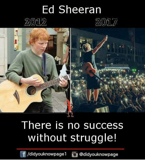 Memes, Struggle, and Ed Sheeran: Ed Sheeran  2012  There is no success  without struggle!  /didyouknowpagel