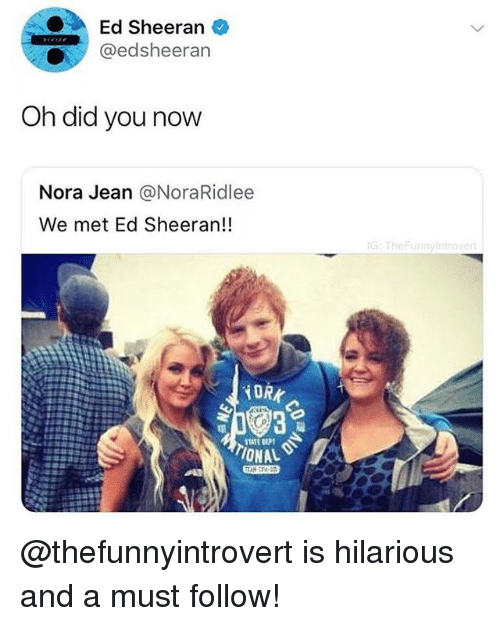 Memes, Ed Sheeran, and Hilarious: Ed Sheeran  @edsheerarn  Oh did you now  Nora Jean @NoraRidlee  We met Ed Sheeran!!  G:TheFunnyin  TIONAL @thefunnyintrovert is hilarious and a must follow!