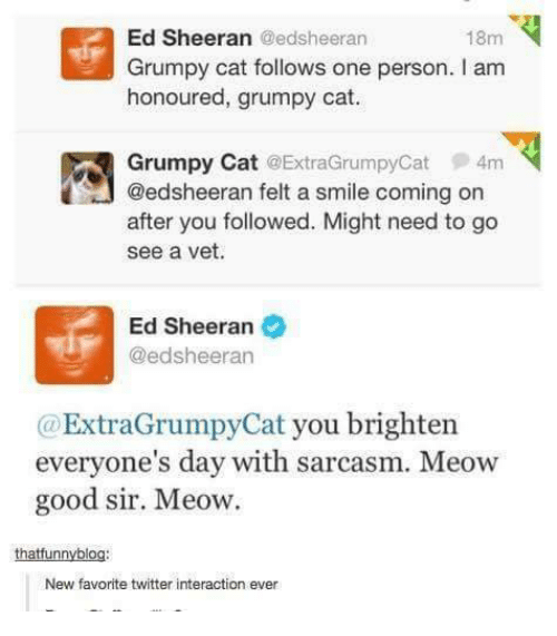 Cats, Dank, and Ed, Edd N Eddy: Ed Sheeran Gedsheeran  18m  Grumpy cat follows one person. I am  honoured, grumpy cat.  Grumpy Cat ExtraGrumpyCat 4m  @edsheeran felt a smile coming on  after you followed. Might need to go  see a vet.  Ed Sheeran  @edsheeran  ExtraGrumpy Cat you brighten  everyone's day with sarcasm. Meow  good sir. Meow.  thatfunnyblo  New favorite twitter interaction ever