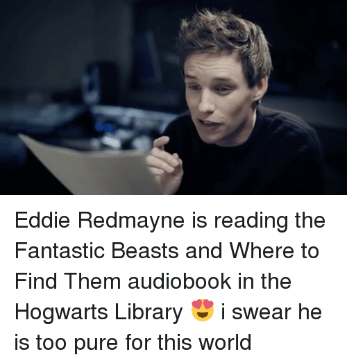 Memes, 🤖, and Eddie Redmayne: Eddie Redmayne is reading the Fantastic Beasts and Where to Find Them audiobook in the Hogwarts Library 😍 i swear he is too pure for this world