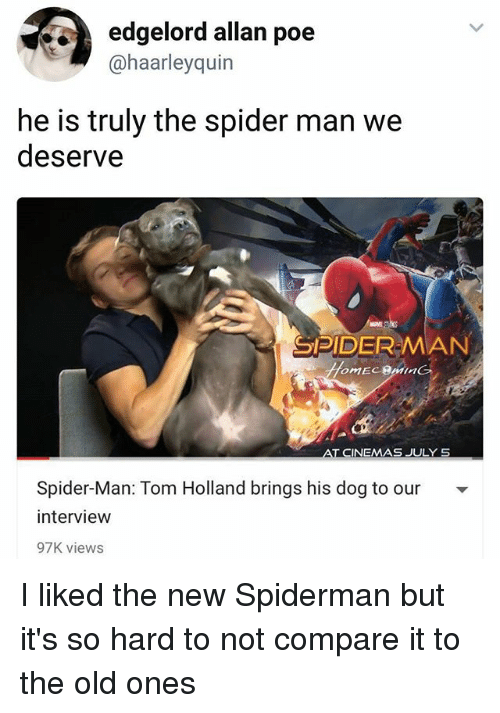 Memes, Spider, and SpiderMan: edgelord allan poe  @haarleyquin  he is truly the spider man we  deserve  SPIDER-MAN  Spider-Man: Tom Holland brings his dog to our -  interview  97K views I liked the new Spiderman but it's so hard to not compare it to the old ones