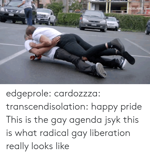 Tumblr, Blog, and Happy: edgeprole:  cardozzza:  transcendisolation: happy pride  This is the gay agenda jsyk  this is what radical gay liberation really looks like